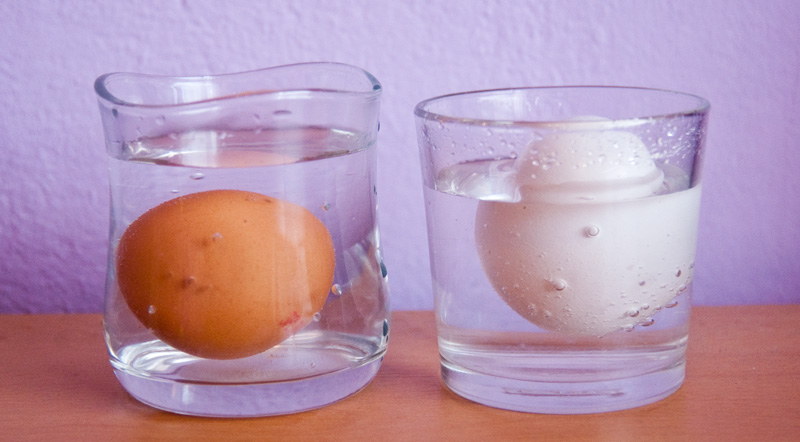 Pokus s asi 3 měsíce starým vajíčkem - staré vajíčko koukalo skoro třetinou nad hladinu.